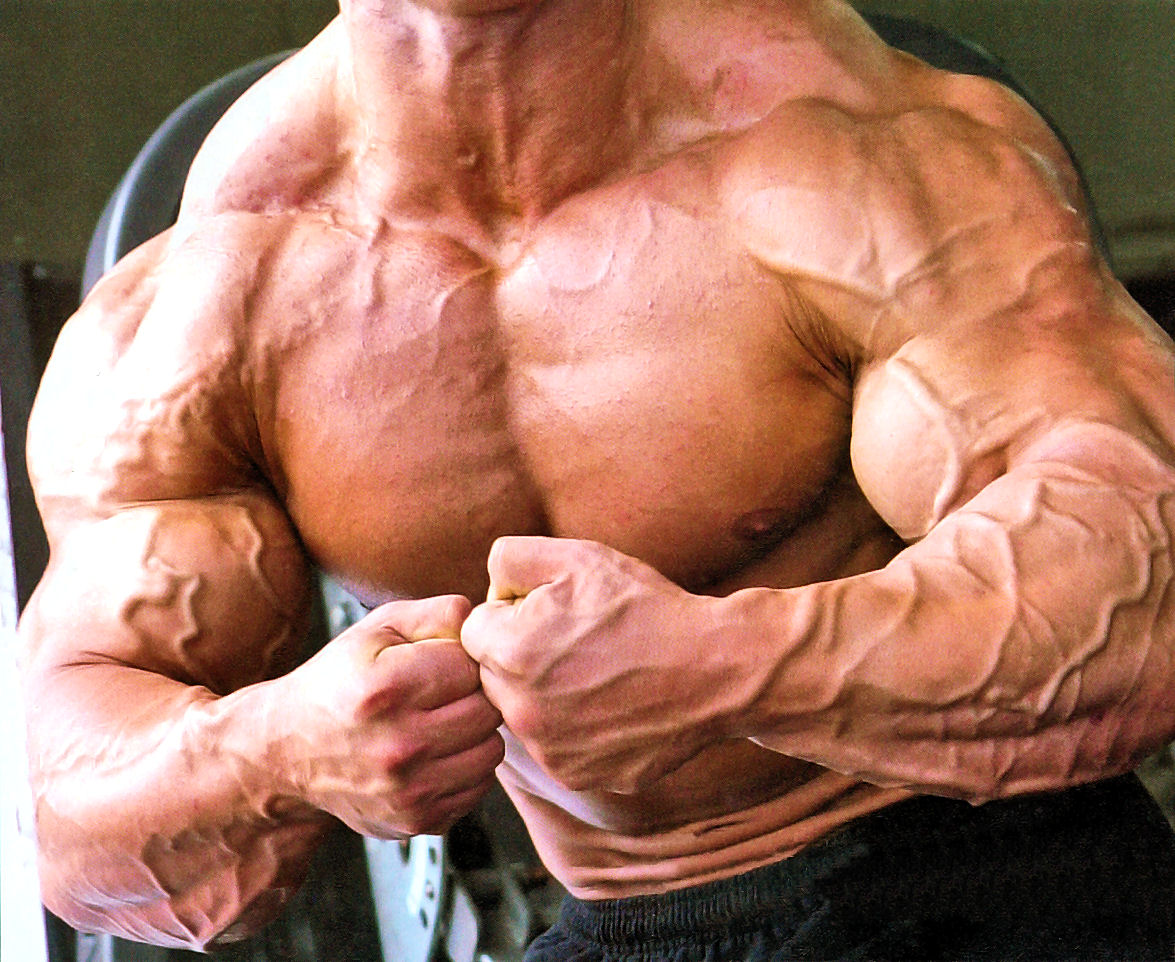 vascularity steroids